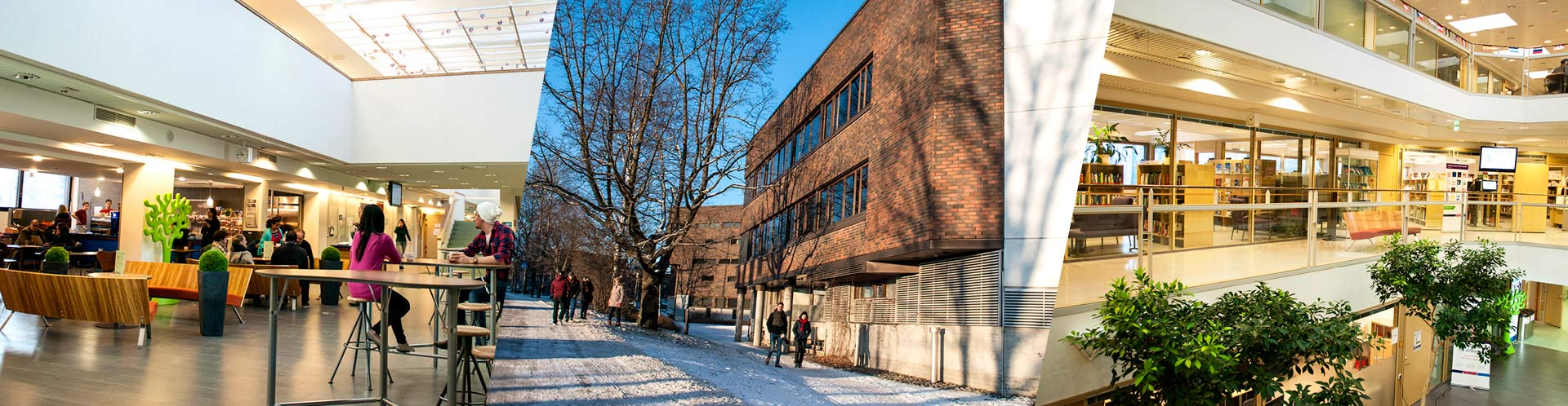 LEPPAVAARA-CAMPUS-LAUREA-UNIVERSITY-OF-APPLIED-SCIENCES-FINLAND.JPG